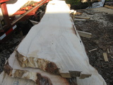 8/4 +1/8 over maple slabs cut spring 2010